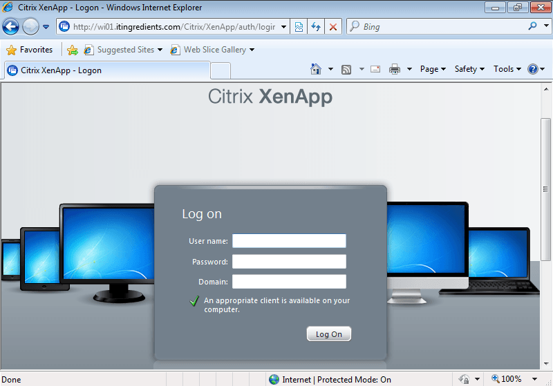 HowtoAccessApplicationInCitrix (10)